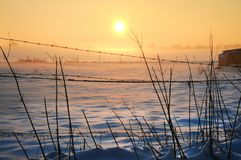 Snow covered field in sunset. Late afternoon, snow covered field in sunset in a small village in west germany royalty free stock photography