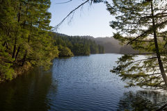 Afternoon sunshine on a lake in California royalty free stock image