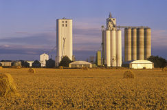 Late afternoon view of grain silos Stock Images