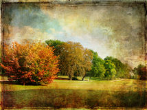 Late Autumn Royalty Free Stock Photos