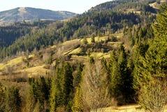 Late autumn in Carpathians Stock Photos