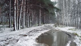 Late Autumn, the first snow. And the road through the alley in the park Royalty Free Stock Photography