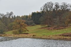 Late Autumn Forest and River Glyme in the Cotswolds Park close to the Blenheim Palace royalty free stock photos