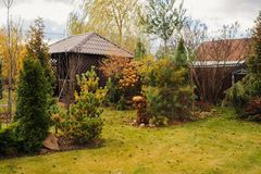Late autumn garden view with wooden shed and conifers. November in country Royalty Free Stock Photo