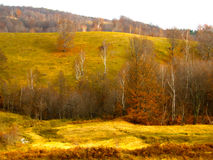 Late autumn landscape with forests in the distance Stock Photo