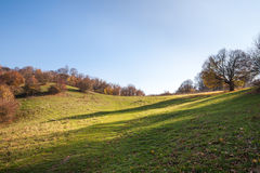 Late autumn in mountains Royalty Free Stock Images