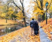 Late autumn in old public park, Riga, Latvia Stock Images