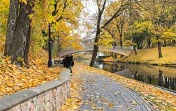 Late autumn in old public park, Riga, Latvia Royalty Free Stock Photography