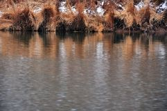 Late autumn riverside. First snow. Seasonal periodicity. Quit place and the silence of nature royalty free stock photo
