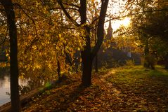 Late autumn scene in sunset light.Church chapel in the background.  royalty free stock image