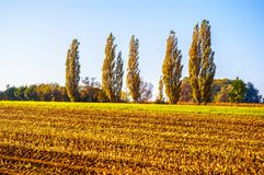 Late autumn scene in the Western Europe Royalty Free Stock Photography