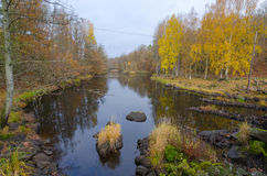 Late autumn scenery of Swedish river Stock Photos