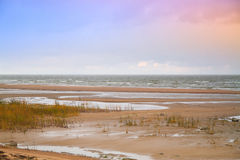 Late autumn at the sea Royalty Free Stock Photography