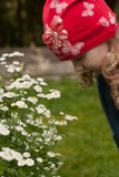 Late bloomers Stock Images