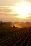 Late Evening Farming Royalty Free Stock Images