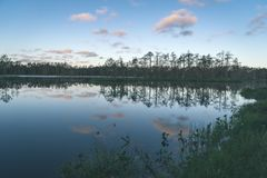 Late evening sun over swamp lakes in summer - vintage retro film look. Late evening sun over swamp lakes in summer, reflections in calm water and green foliage royalty free stock photography