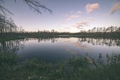 Late evening sun over swamp lakes in summer - vintage retro film look. Late evening sun over swamp lakes in summer, reflections in calm water and green foliage royalty free stock image