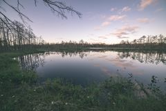 Late evening sun over swamp lakes in summer - vintage retro film look. Late evening sun over swamp lakes in summer, reflections in calm water and green foliage stock image