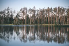 Late evening sun over swamp lakes in summer - vintage retro film look. Late evening sun over swamp lakes in summer, reflections in calm water and green foliage stock photo