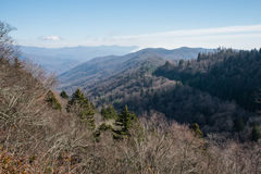 Late fall at the Great Smoky Mountains National Park Royalty Free Stock Photos