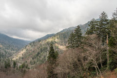 Late fall at the Great Smoky Mountains National Park Stock Photography