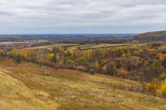 Late fall landscape in rural area Stock Photos