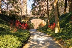 Late fall path and bridge. A view along a paved pathway through a wooded area in late fall with a footbridge passing overhead in the distance and red holly stock images