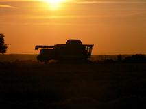 Late Night Harvesting. Combine harvester in evening action Stock Photography