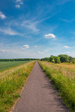 Late Spring, Early Summer landscape of ceral field in Germany Royalty Free Stock Image