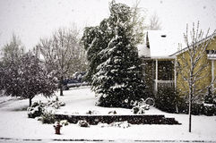 Late spring snow Stock Photo