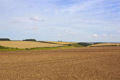 Late summer agricultural scenery Royalty Free Stock Photo