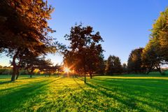 Late summer, autumn sunset in a park Royalty Free Stock Images
