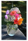 Late summer bouquet in glass vase. Some bright, some subtle, but all unique and lovely, late summer garden flowers offer a last hurrah before the weather turns Royalty Free Stock Photo