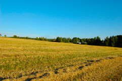 Late summer countryside Royalty Free Stock Photo