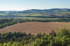 Late summer countryside with straw hay rolls field. And forests stock photo