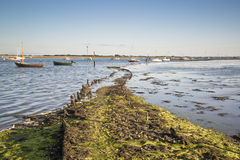 Late Summer evening landscape across harbor with boats Royalty Free Stock Images