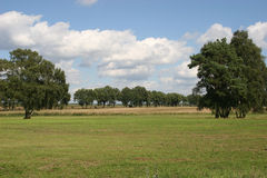 Late Summer Landscape. With fields, meadows and trees royalty free stock images
