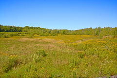 Late summer landscape. Bromont Quebec Canada royalty free stock photography