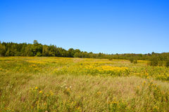 Late summer landscape. Bromont Quebec Canada royalty free stock images