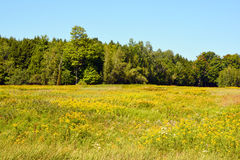 Late summer landscape. Bromont Quebec Canada royalty free stock photos