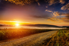 Late summer morning 1 Royalty Free Stock Photography