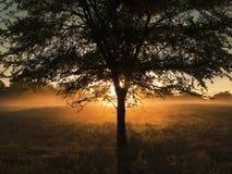 Late summer morning sunrise or sunset Royalty Free Stock Image