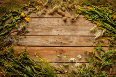 Late summer natural meadow flowers and plants on vintage wooden background Stock Photos