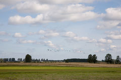 Late summer rural landscape with cranes flying Royalty Free Stock Photography