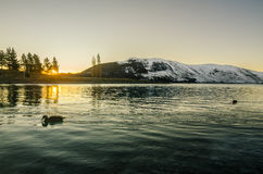 Late Tekapo during winter Royalty Free Stock Photography