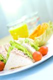 Late of tuna sandwich served with crisp Royalty Free Stock Images