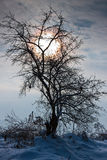 Late winter afternoon Royalty Free Stock Photos