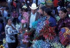 LATEIN-AMERIKA GUATEMALA CHICHI Lizenzfreies Stockfoto