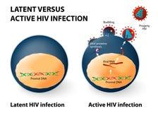 Latente en actieve HIV besmetting royalty-vrije illustratie