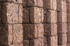 Laterite τοίχος Στοκ Φωτογραφία